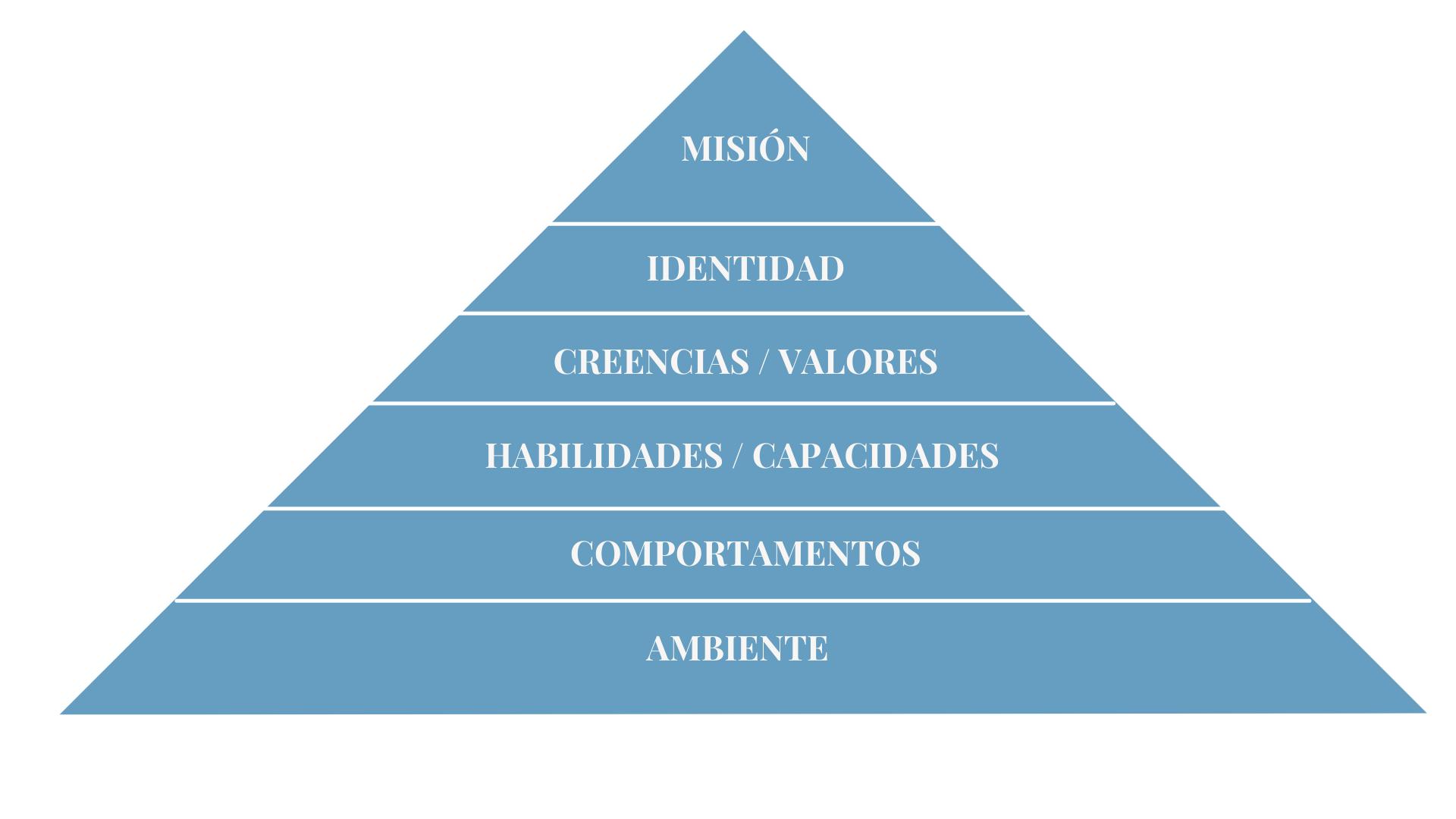 niveles neurológicos pirámide